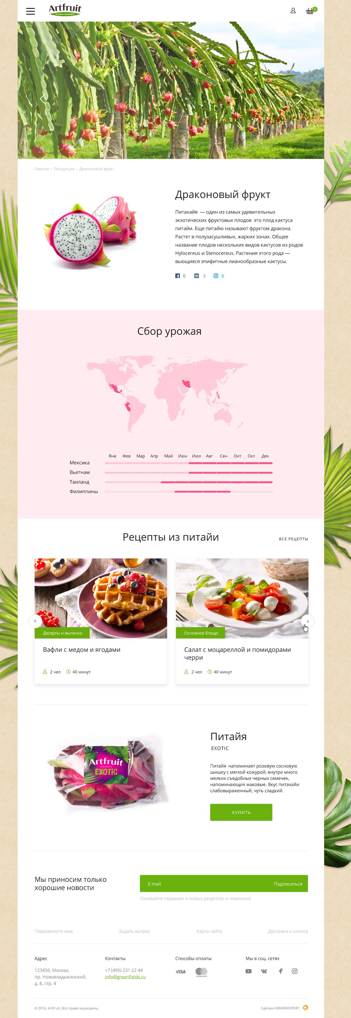Рецепты и гастрономический фудстайлинг Artfruit