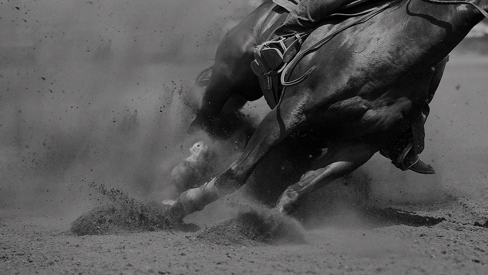 Уникальная возможность поучаствовать в настоящих состязаниях ковбоев