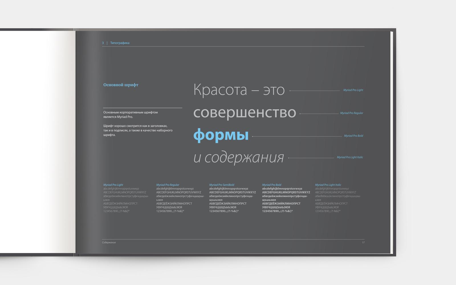 Брендбук описывает все используемые в фирменном стиле шрифты