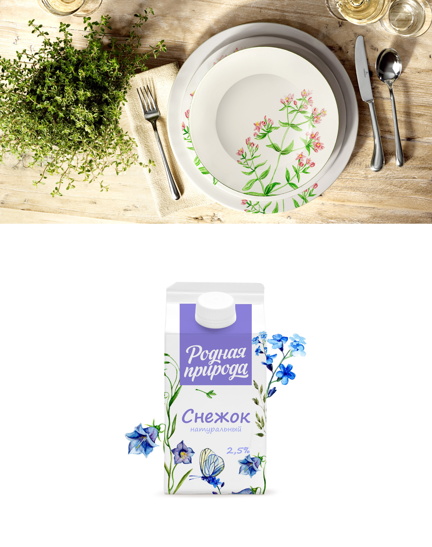 Дизайн логотипа и дизайн упаковки  «Родная природа»