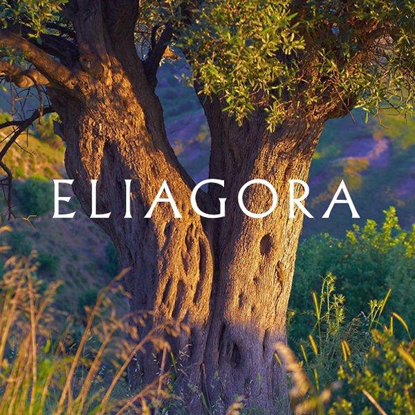 ELIAGORA